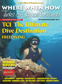 Read our November / December 2010 issue of Where When How - Turks & Caicos Islands magazine!