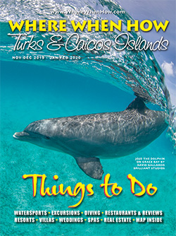 Read our November / December 2019 – January / February 2020 issue of Where When How - Turks & Caicos Islands magazine!