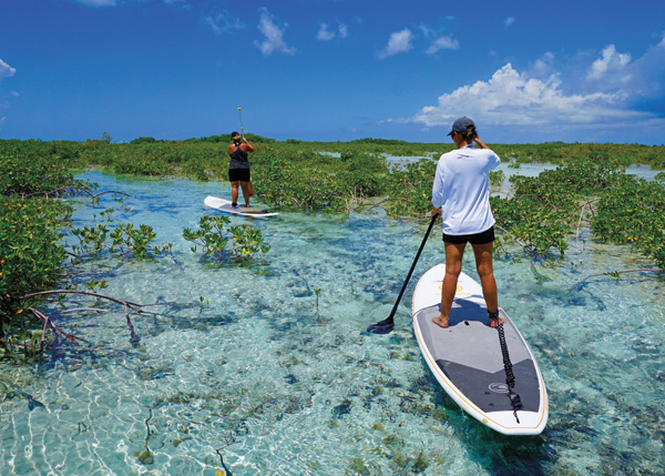 A photograph of standup paddle boarding, Providenciales (Provo), Turks and Caicos Islands.