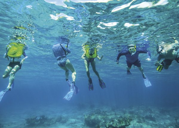 A photograph of snorkeling, Providenciales (Provo), Turks and Caicos Islands.