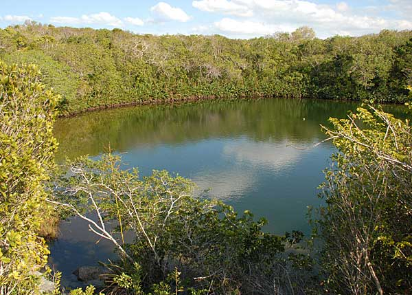 A photograph of Cottage Pond surrounded by lush vegetation on North Caicos, Turks and Caicos Islands, British West Indies