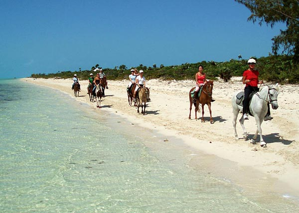 A photograph of horseback riding on Long Bay Beach on Providenciales (Provo), Turks and Caicos Islands