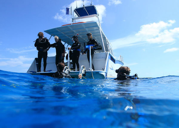 A photograph of Big Blue Collective's SCUBA Diving, Turks and Caicos Islands, British West Indies