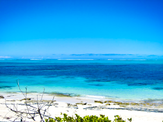 A photograph of the beach at Smith's Reef, Providenciales (Provo), Turks and Caicos Islands, British West Indies